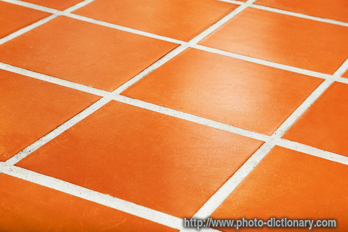 Ceramic tiled floor photo picture definition at photo for Define flooring