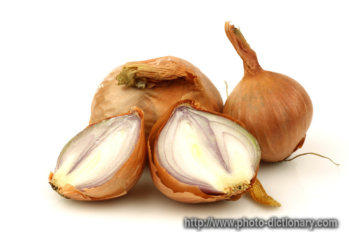 Shallots allium ascalonicum - Unknown uses for an onion ...