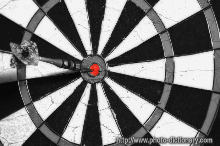 dart board photopicture definition at photo dictionary