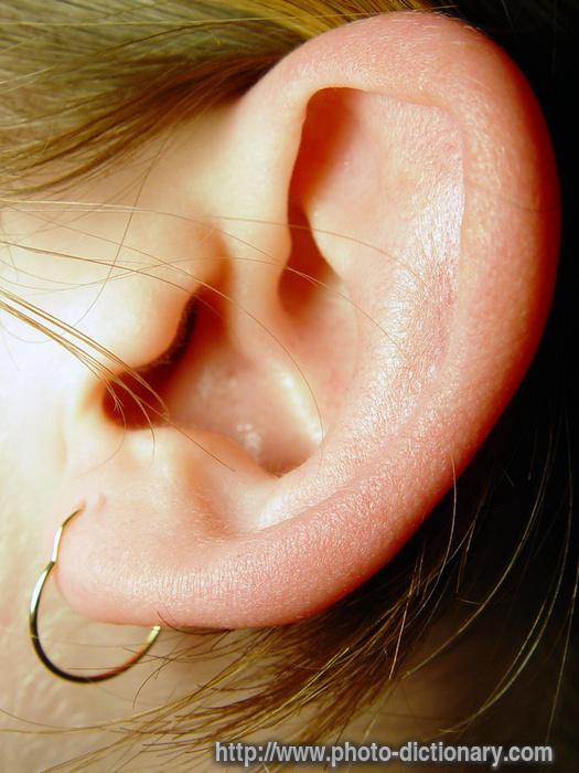 ear lobe tattoo Online