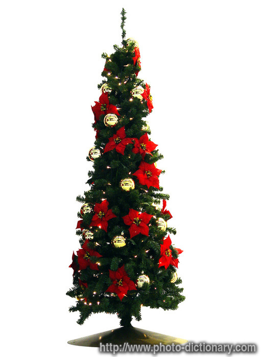 Christmas tree - photo/picture definition at Photo ...