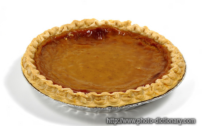 Pumpkin Pie Photo Picture Definition At Photo Dictionary
