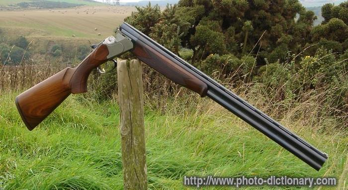 shotgun - photo/picture definition at Photo Dictionary ...