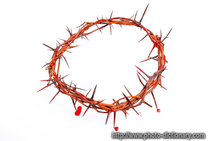 thorn crown - photo/picture definition at Photo Dictionary ...