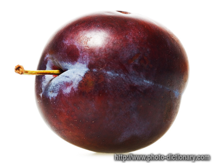 Plum Photo Picture Definition At Photo Dictionary Plum