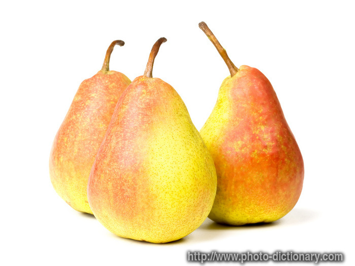 Pears Photo Picture Definition At Photo Dictionary