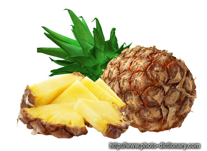 Pineapple - photo/picture definition - Pineapple word and phrase image