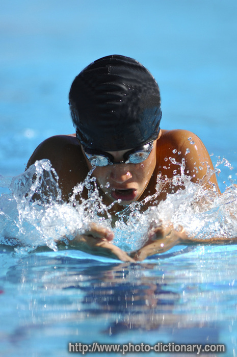 Swimming Photo Picture Definition At Photo Dictionary