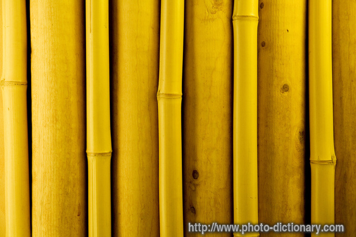 Bamboo images for Floor tiles urban dictionary