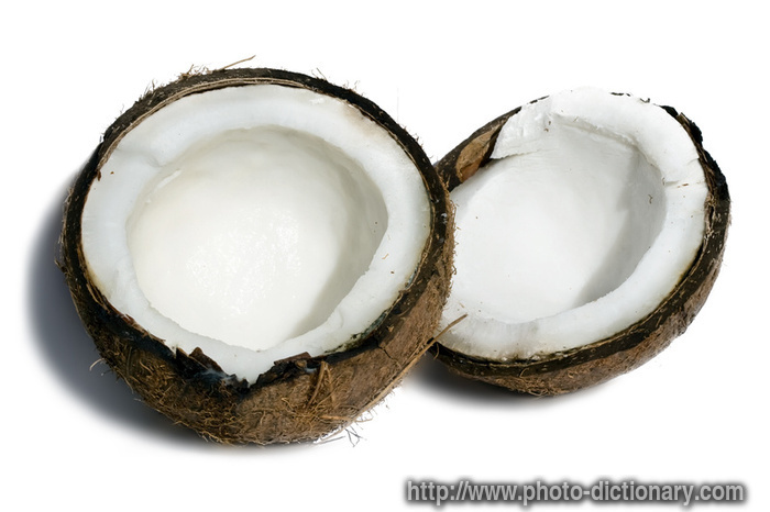 Fresh coconut photo picture definition at photo for Meaning of frash