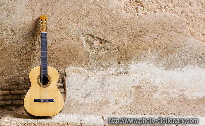Guitar Photo Picture Definition At Photo Dictionary Guitar