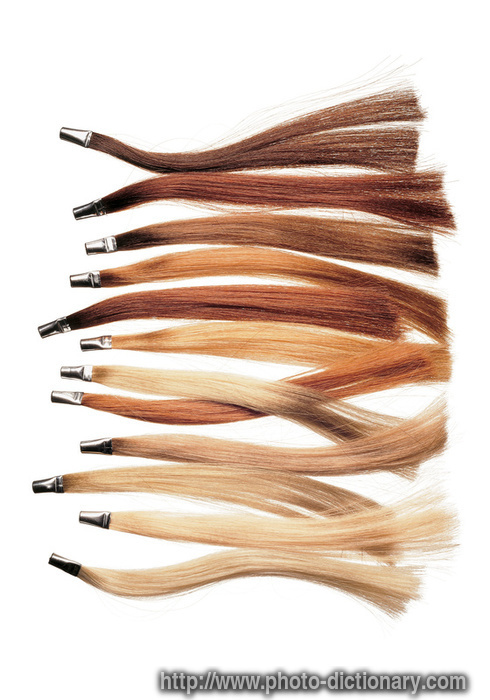 Heartley 18 Inch 100 Strands Loop Micro Ring Be Tipped Remy Human Hair Straight Chocolate Brown