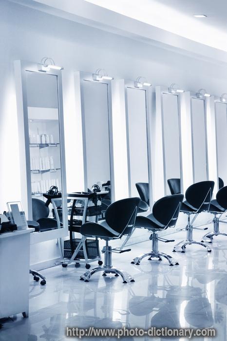 Salon définition