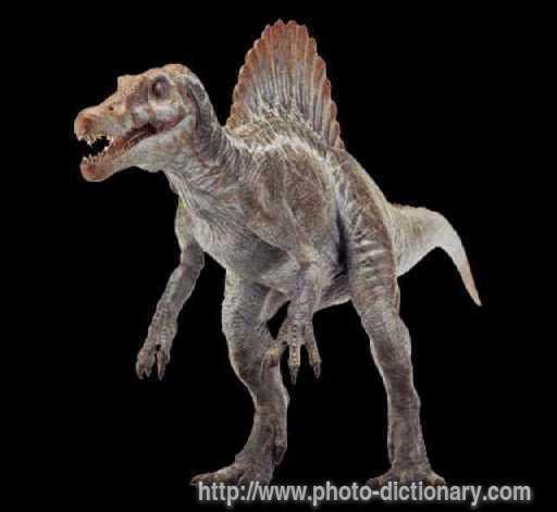 Spinosaurus Aegyptiacu...