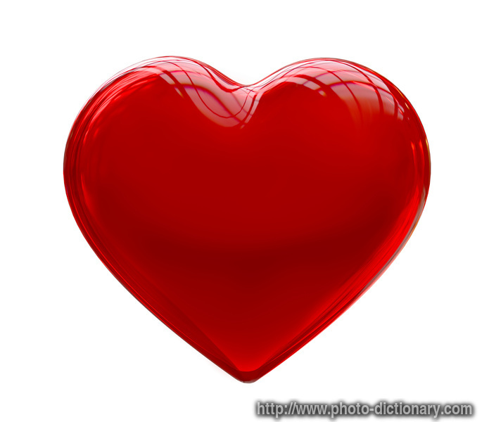 Heart  Picture Definition At Photo Dictionary