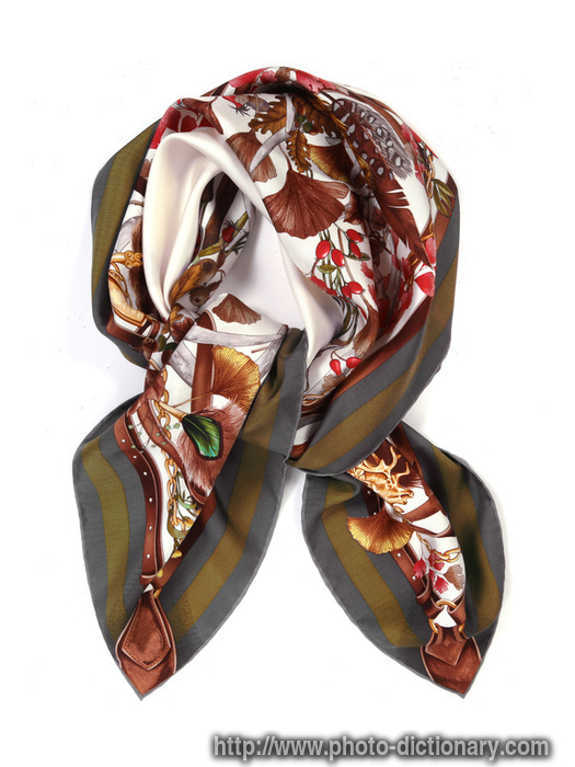 silk scarf photo picture definition at photo dictionary