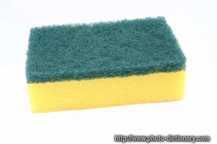 how to clean sponges with bleach
