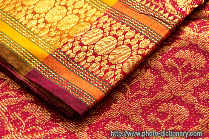 Indian sari - photo/picture definition at Photo Dictionary ...