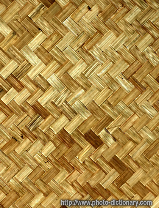 Rattan photo picture definition at photo dictionary for Wicker meaning