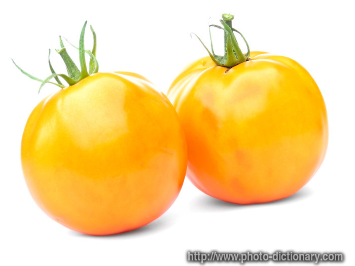 yellow tomatoes - photo/picture definition at Photo ...