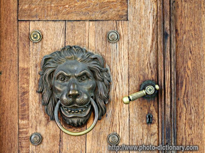 Lion Knocker Photo Picture Definition At Photo