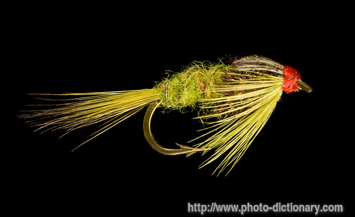 nymph fishing fly photo picture definition at photo