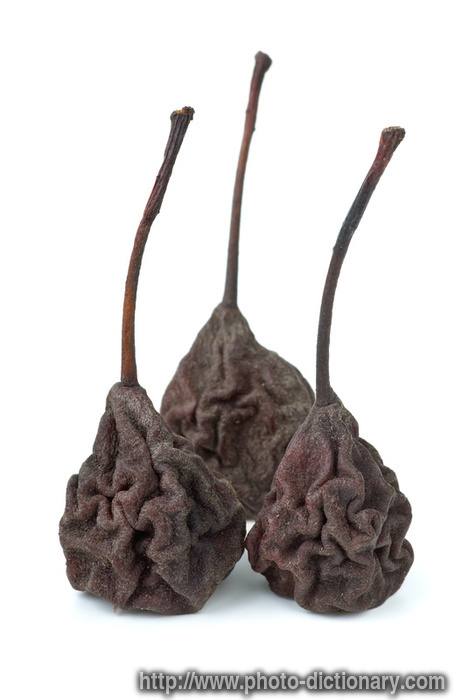 dried pears - photo/picture definition - dried pears word and phrase ...