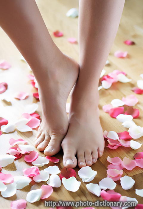 Фото женские ножки 40828 фотография