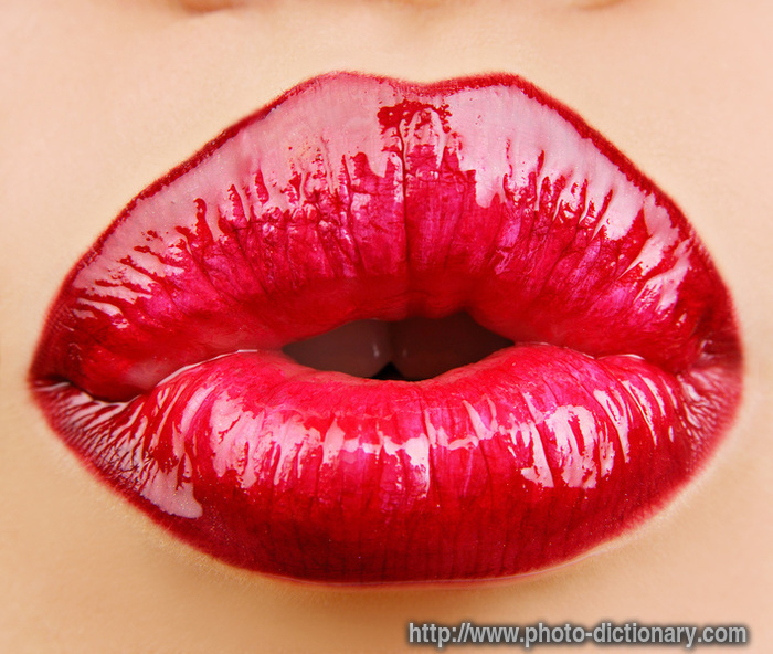 http://photo-dictionary.com/photofiles/list/637/1045lips.jpg
