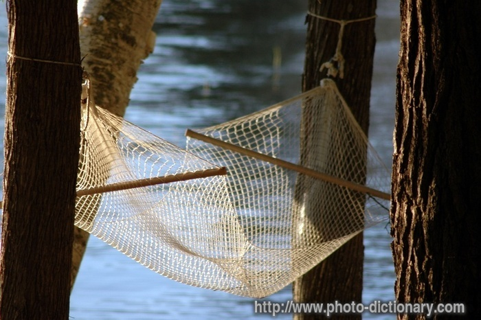 Hammock   Photo/picture Definition   Hammock Word And Phrase Image