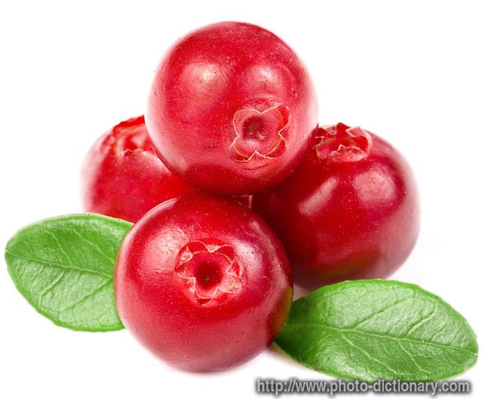 http://www.faqs.org/photo-dict/photofiles/list/7073/9444cranberry.jpg