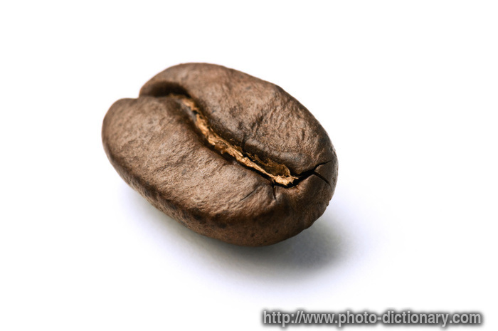 coffee bean - photo/picture definition - coffee bean word and phrase