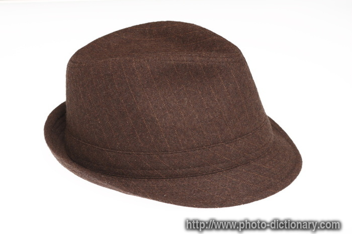 fedora hat - photo picture definition - fedora hat word and phrase image d89d791bf