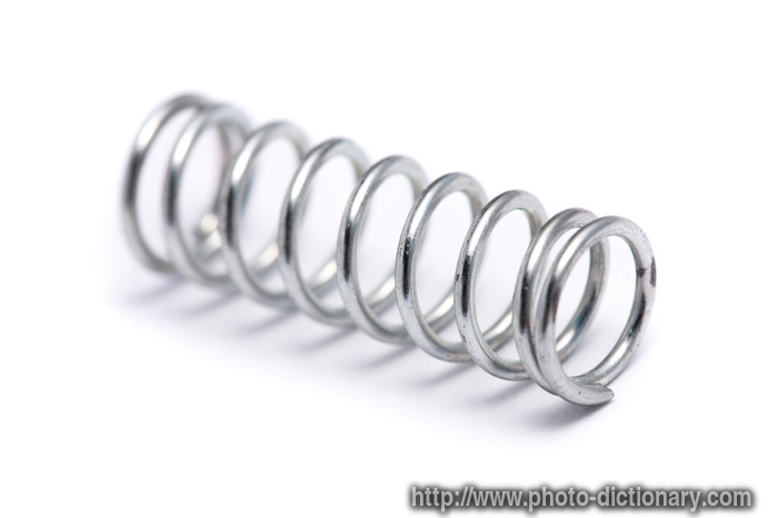 Spring Coil Photo Picture Definition At Photo Dictionary