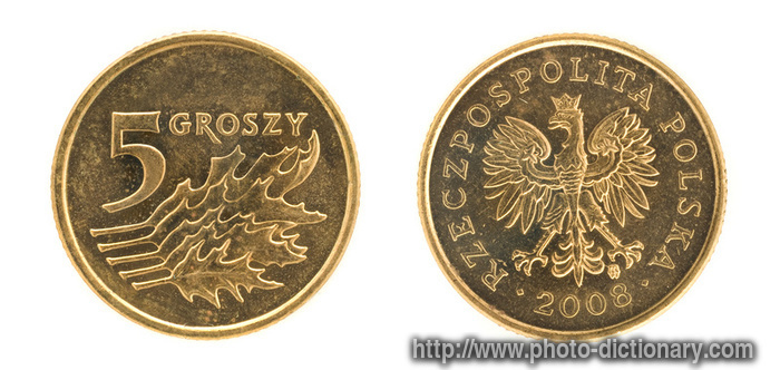 Polish Money Photo Picture Definition At Photo