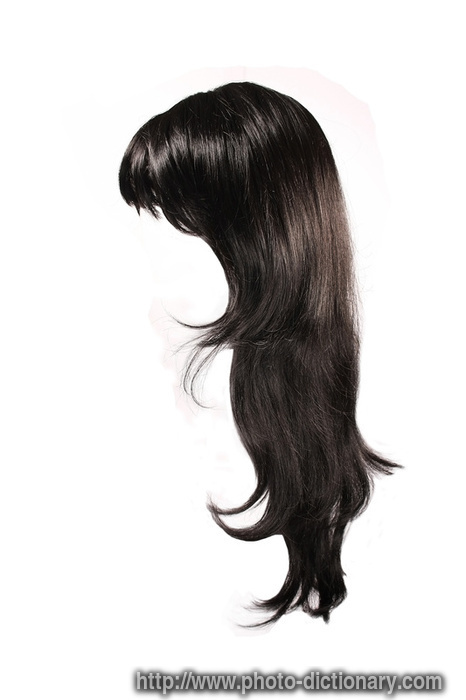 hair define hair at dictionarycom auto design tech