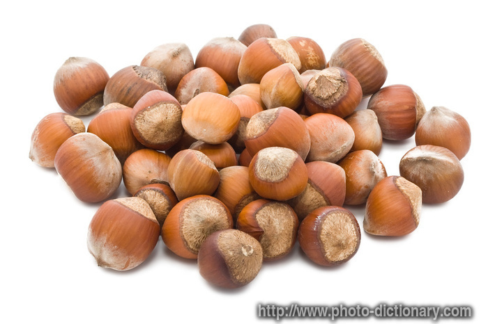 nuts definition
