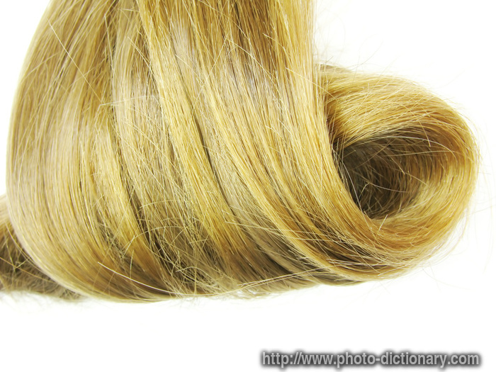 Hair Definition : hair swirl - photo/picture definition at Photo Dictionary - hair swirl ...