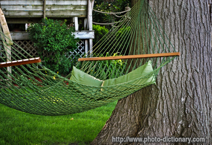 backyard hammock photo picture definition backyard hammock word