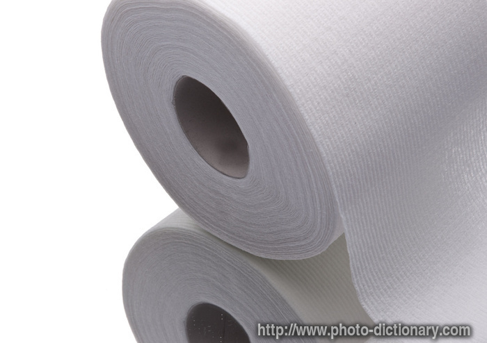 Toilet Paper Photo Picture Definition At Photo
