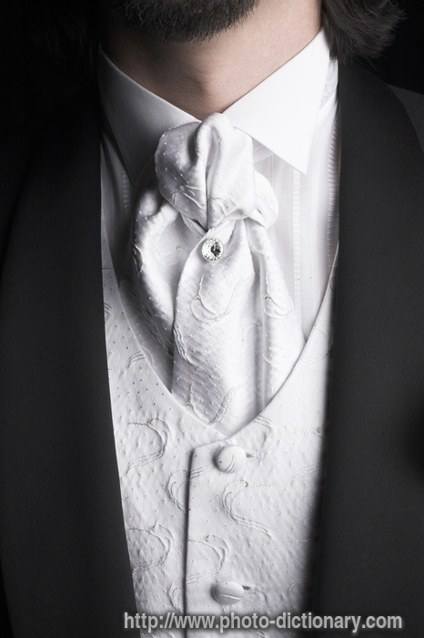 wedding suit photo picture definition wedding suit word and phrase image