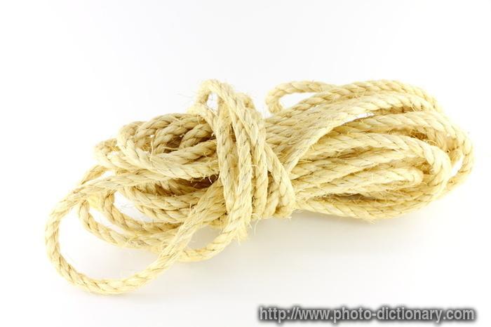 12347hemp_rope.jpg