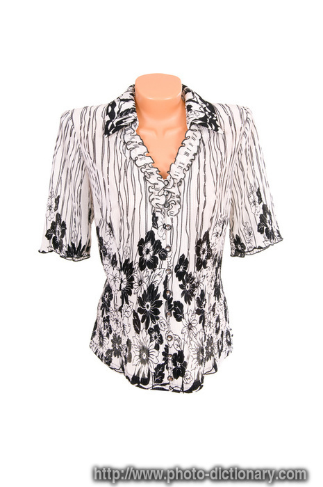 Chic Blouse Photo Picture Definition At Photo Dictionary
