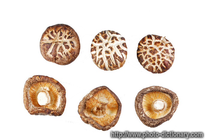 dried mushroom - photo/picture definition at Photo Dictionary - dried ...