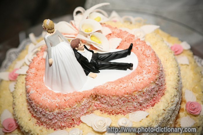Pin Pin Funny Wedding Cake Photopicture Definition On ...