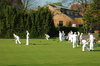 lawn bowling - photo/picture definition - lawn bowling word and phrase image