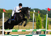 jumping show - photo/picture definition - jumping show word and phrase image