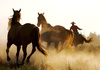 wild west - photo/picture definition - wild west word and phrase image
