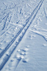 ski track - photo/picture definition - ski track word and phrase image