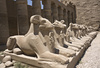 Karnak temple - photo/picture definition - Karnak temple word and phrase image